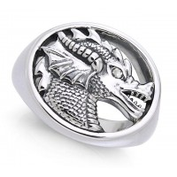King Arthur Pendragon Seal White Zirconium Ring Jewelry Gem Shop  Sterling Silver Jewerly | Gemstone Jewelry | Unique Jewelry