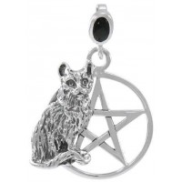 Cat Familiar Pentacle Laurie Cabot Pendant